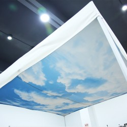 Canopy Tent Cieling